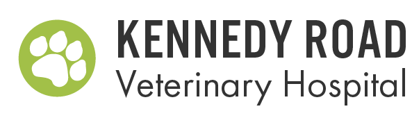 Kennedy Road Veterinary Hospital